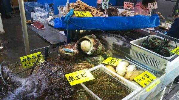 いゆまちのお魚